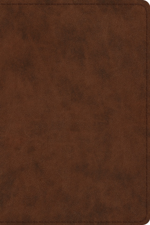 ESV Study Bible, Personal Size, Brown