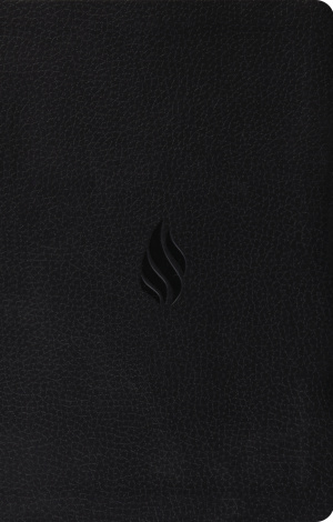 ESV Premium Gift Bible (TruTone, Midnight, Flame Design)