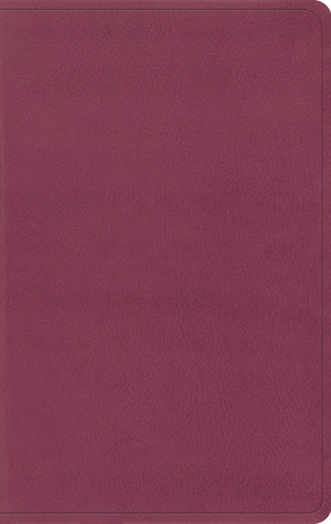 ESV Value Thinline Bible (TruTone, Pink)
