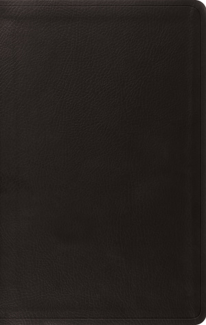 ESV Value Thinline Bible (TruTone, Black)