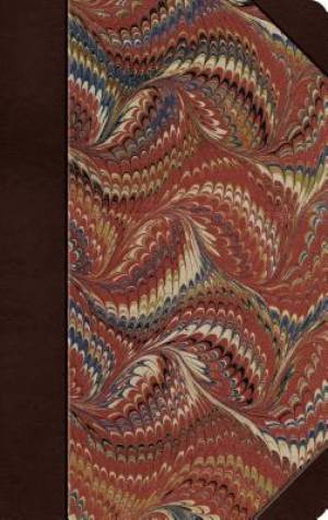 ESV Thinline Bible (Classic Marbled)