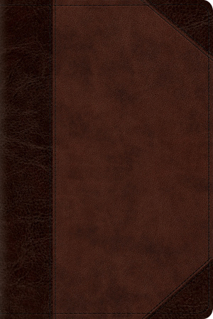 ESV Personal Reference Bible (TruTone, Brown/Walnut, Portfolio Design)