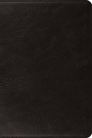 ESV Large Print Bible (Black)