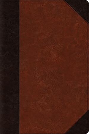 ESV Large Print Bible (TruTone, Brown/Cordovan, Portfolio De