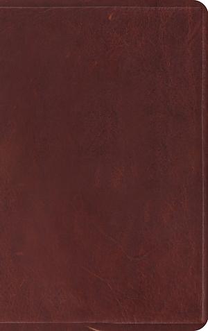ESV Thinline Bible (Brown)