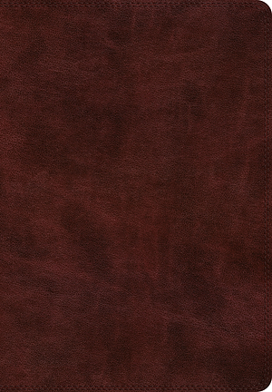 ESV Super Giant Print Bible (TruTone, Burgundy)