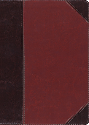 ESV MacArthur Study Bible (TruTone, Brown/Cordovan, Portfoli