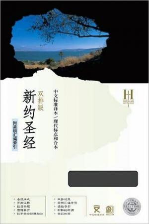 Chinese Standard Bible Mandarin New Testament