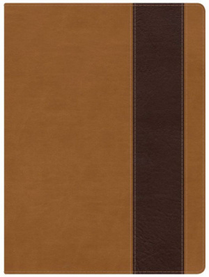 Holman Study Bible Tan & Chocolate Imitation Leather