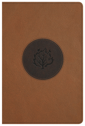KJV I Am Bible, Brown Leathertouch