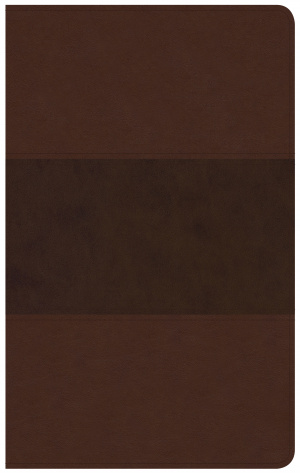 CSB Ultrathin Reference Bible, Saddle Brown Leathertouch