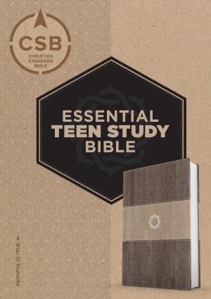CSB Essential Teen Study Bible, Weathered Gray Cork Leathert