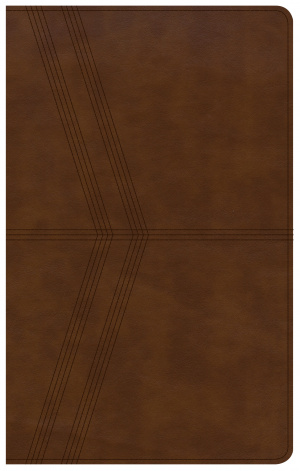 KJV Ultrathin Reference Bible, Brown Deluxe Leathertouch
