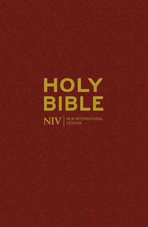 NIV Popular Bible : Burgundy, Hardback