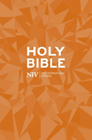 NIV Popular Bible: Orange, Paperback