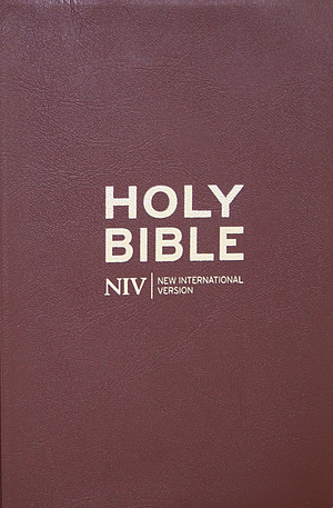 NIV Pocket Flexibind Chocolate Bible