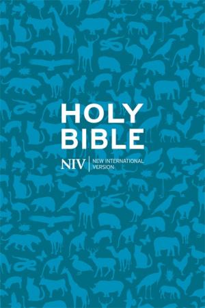 NIV Pocket Bible Anglicised Paperback