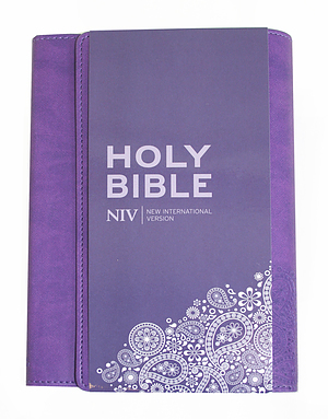 Niv Thinline Purple Imitation Leather Bible Anglicised