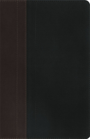 NIV Zondervan Study Bible: Chocolate/ Black, Imitation Leather, Personal Size