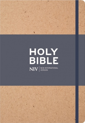 NIV Larger Print Textured Journalling Bible