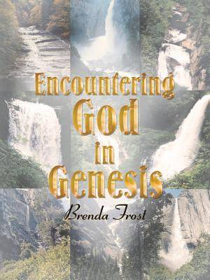 Encountering God in Genesis