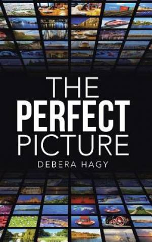 The Perfect Picture