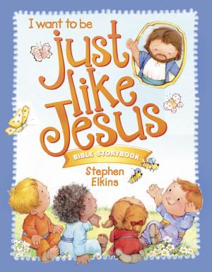 Just Like Jesus Bible Storybook