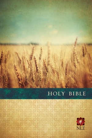 Premium Value Slimline Bible Large Print NLT