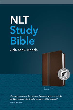 NLT: Study Bible, Brown Slate, Leatherlike, Indexed