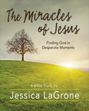 The Miracles of Jesus - Women's Bible Study Participant Work
