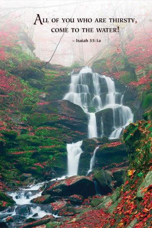 Waterfall Scripture Series Bulletin (Pkg of 50)