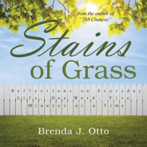 Stains of Grass