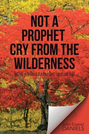 Not a Prophet Cry from the Wilderness