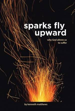 Sparks Fly Upward: Why God Allows Us to Suffer
