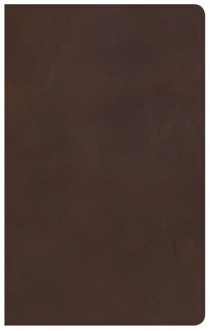 KJV Ultrathin Reference Bible, Brown Genuine Leather