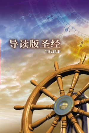 Chinese Contemporary Student Bible