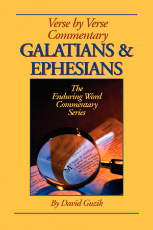 Galatians & Ephesians Commentary