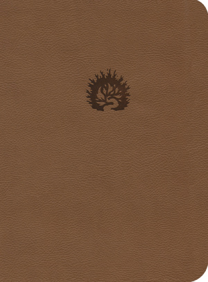 ESV Reformation Study Bible LL Light Brown