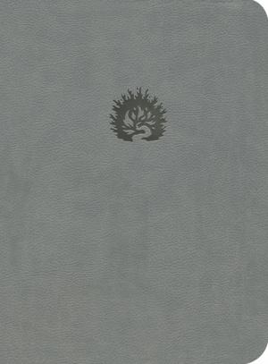 NKJV Reformation Study Bible - Light Grey