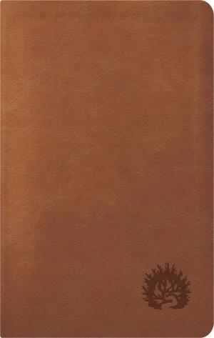 ESV Reformation Study Bible, Condensed Edition
