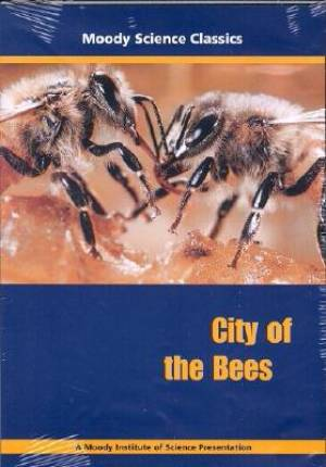 City Of The Bees DVD