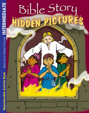 Bible Story Hidden Pictures Activity Book