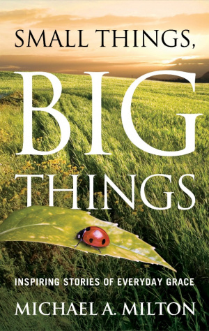 Small Things Big Things Pb