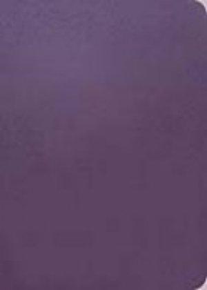 The Message Remix 2.0: Purple, Leatherlook