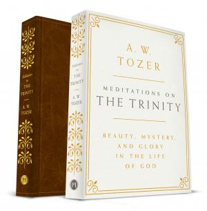 Meditations on the Trinity