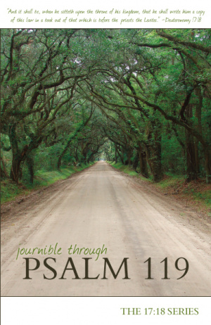 Journible Through Psalm 119 Pb