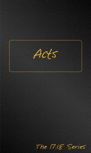 Acts -- Journible The 17:18 Series