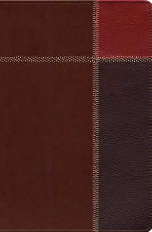 The Message Large Print Bible:, Brown Trio, Leather-Look