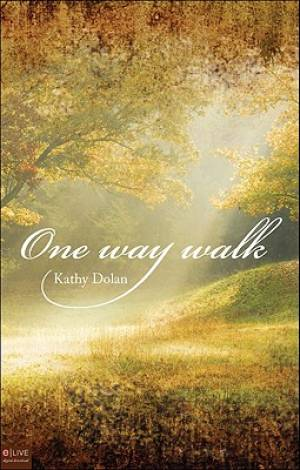 One Way Walk