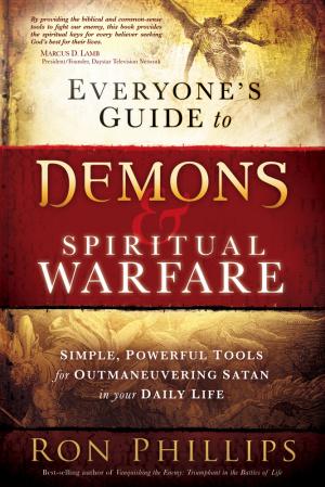 Everyones Guide To Demons And Spiritu Pb